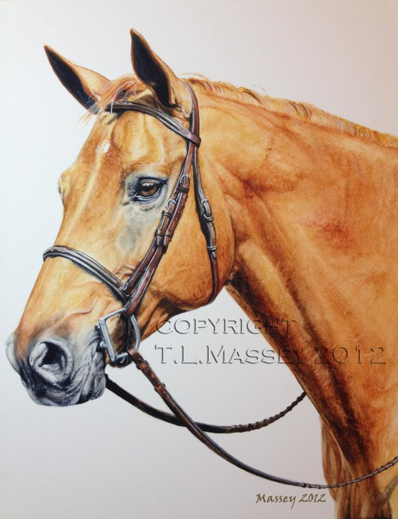 Rhimer, Horse, Hanoverian, Warmblood, Painting, Portrait, Pony, Hunter, Jumper